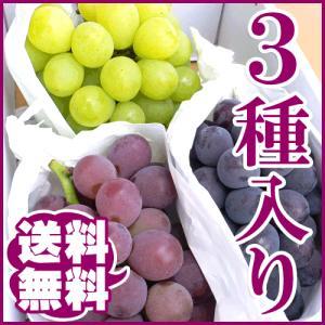 ぶどう 3種セット わけあり 訳あり 送料無料 3kg|arumama