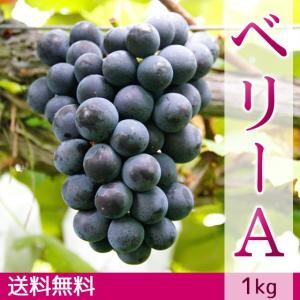 マスカット・ベリーA(種無し)ぶどう 送料無料 1kg|arumama