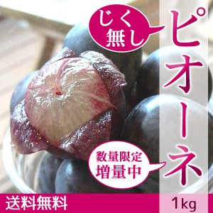 ピオーネ じく無し 訳あり わけあり ぶどう 送料無料 1kg|arumama