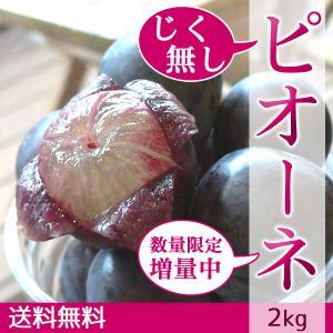 ピオーネ じく無し 訳あり わけあり ぶどう 送料無料 2kg|arumama