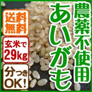 【平成29年産】 送料無料 玄米(精米無)農薬不使用 あいがも農法 お米 コシヒカリ 白米 有機肥料 29kg 当日精米|arumama