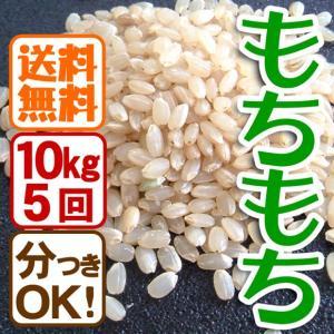 平成29年産 定期購入 送料無料 お米10kg×5回 玄米 白米 もちもち米|arumama