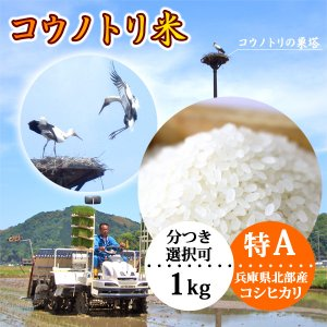 新米 平成30年産 玄米 白米 コウノトリ米 1kg〜 当日精米|arumama