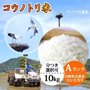 新米 送料無料 お米10kg 玄米 白米 コウノトリ米|arumama