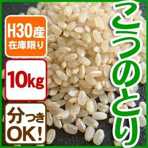 【在庫限定・H30年産】送料無料 お米10kg 玄米 白米 コウノトリ米|arumama