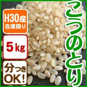 【在庫限定・H30年産】玄米 白米 コウノトリ米 5kg 当日精米|arumama