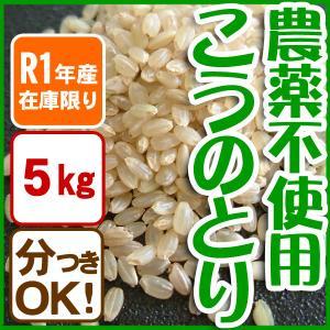 【在庫限定・H30年産 】農薬不使用 玄米 白米 コウノトリ米 5kg 当日精米 arumama