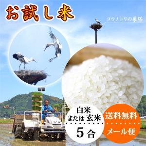 新米 平成30年産 お米 お試し 白米 送料無料|arumama