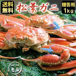 松葉ガニ 約1kg ギフト 津居山産 産地直送 送料無料|arumama