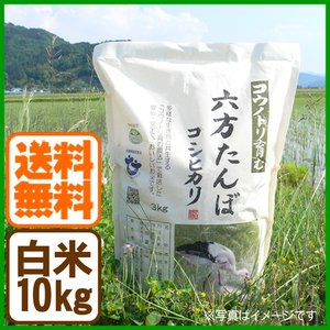 新米 コシヒカリ 令和元年産 白米 10kg コウノトリ育む農法 送料無料 お米 兵庫県産|arumama