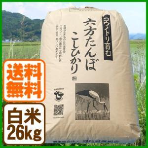 新米 コシヒカリ 令和元年産 白米 26kg コウノトリ育む農法 送料無料 お米 兵庫県産|arumama