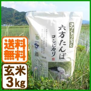 新米 コシヒカリ 令和元年産 玄米 3kg こうのとり米 送料無料 兵庫県産|arumama