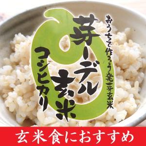 芽ーデル玄米