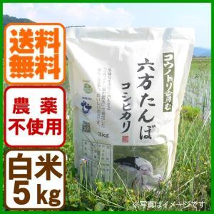 新米 令和元年産 白米 農薬不使用 コシヒカリ5kg コウノトリを育む農法 送料無料 お米 兵庫県産|arumama