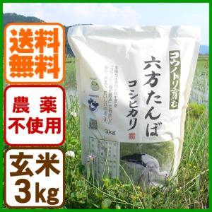 新米 令和元年産 玄米 農薬不使用 コシヒカリ3kg こうのとり米 送料無料 兵庫県産|arumama