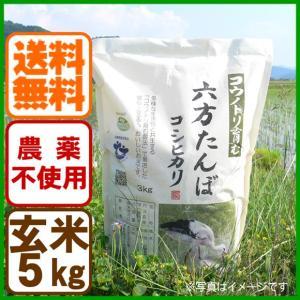 新米 令和元年産 玄米 農薬不使用 コシヒカリ5kg こうのとり米 送料無料 兵庫県産|arumama