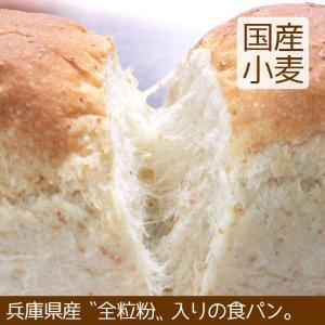 食パン 全粒粉入り  北海道産小麦|arumama