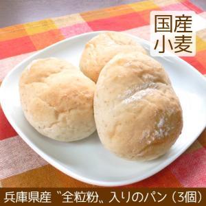 小型ふたごパン 全粒粉入り 3個 北海道産小麦|arumama