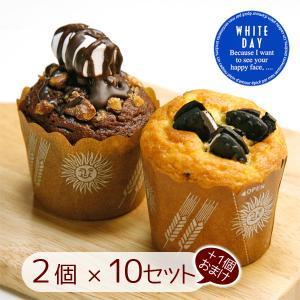 チョコレート 義理チョコ マフィン 10+1セット|arumama