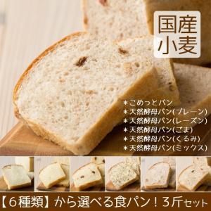 送料無料 お試しセット 食パン 母の日月間|arumama