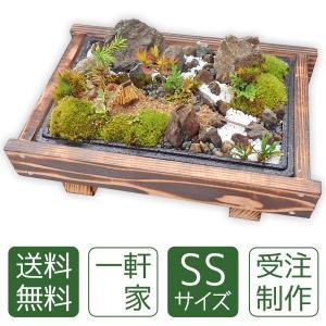 苔盆栽 一軒家SS|arumama