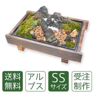 苔盆栽 アルプスSS|arumama