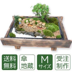 盆栽 ミニ庭園 盆景【傘地蔵(M)】|arumama