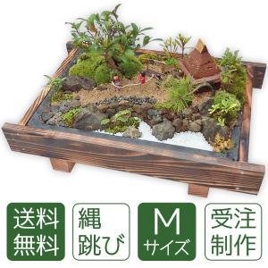 盆栽 ミニ庭園 盆景【縄跳び(M)】|arumama