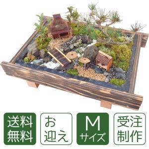 父の日 盆栽 ミニ庭園 盆景【お迎え(M)】|arumama