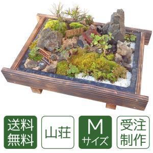 盆栽 ミニ庭園 盆景【山荘(M)】|arumama
