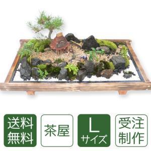 父の日 盆栽 ミニ庭園 盆景【茶屋(L)】|arumama