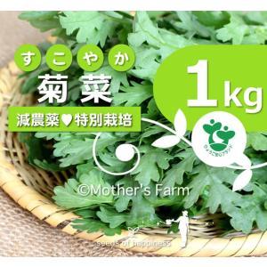 菊菜  きくな 春菊 農薬90%カット 特別栽培【1kg】 arumama