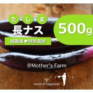 長ナス 長那須 農薬90%カット 特別栽培【500g】|arumama