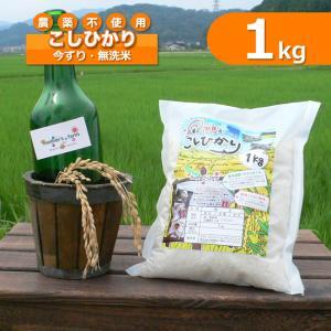 玄米 白米 1kg 今ずり米 無洗米 農薬不使用 コシヒカリ 令和元年産|arumama