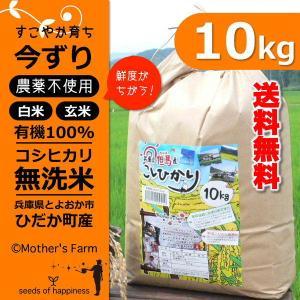 玄米 白米 10kg 今ずり米 無洗米 農薬不使用 コシヒカリ 令和元年産|arumama