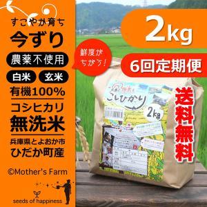 定期購入2kgx6回 令和元年産 玄米 白米 今ずり米 無洗米 農薬不使用 コシヒカリ|arumama