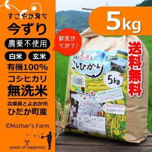 【新米】玄米 白米 5kg 今ずり米 無洗米 農薬不使用 コシヒカリ 平成30年産|arumama