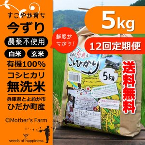 定期購入5kgx12回 令和元年産 玄米 白米 今ずり米 無洗米 農薬不使用 コシヒカリ|arumama