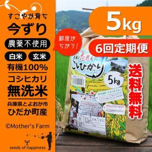 定期購入5kgx6回 令和元年産 玄米 白米 今ずり米 無洗米 農薬不使用 コシヒカリ|arumama