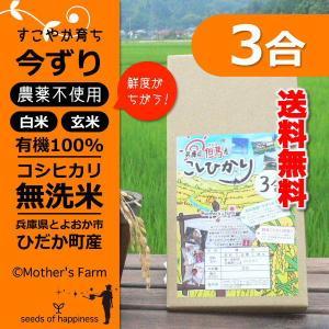 【新米】お試し 玄米 白米 3合 今ずり米 無洗米 農薬不使用 コシヒカリ 送料無料|arumama
