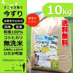 【新米】 平成30年産 無洗米 コシヒカリ 玄米 白米 10kg 今ずり米 兵庫県 但馬産|arumama