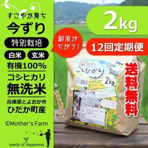 【定期購入】 2kgx12回 令和元年産 玄米 白米 今ずり米 無洗米 減農薬・特別栽培米 コシヒカリ|arumama