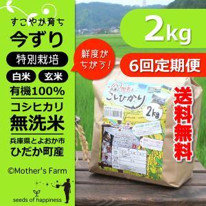 【定期購入】2kgx6回 令和元年産 玄米 白米 今ずり米 無洗米 減農薬・特別栽培米 コシヒカリ|arumama