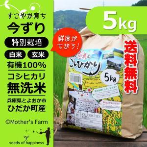 【新米予約】無洗米 コシヒカリ 玄米 白米 5kg 今ずり米 兵庫県 但馬産|arumama