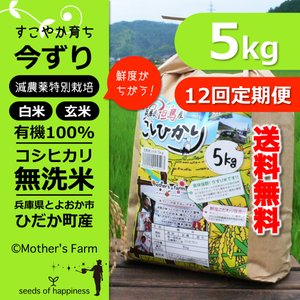 【新米】【定期購入】 5kgx12回 令和元年産 玄米 白米 今ずり米 無洗米 減農薬・特別栽培米 コシヒカリ|arumama