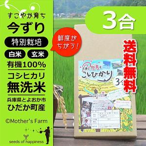 【新米】 平成30年産 無洗米 コシヒカリ お試し 玄米 白米 3合 今ずり米 送料無料|arumama