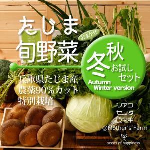 【北海道・沖縄は送料540円】  ※朝、収穫しその日のうちに出荷します。  ◎慣行栽培で使用される農...