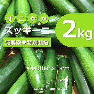 ズッキーニ 農薬90%カット 特別栽培【2kg】|arumama