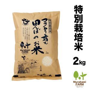 特別栽培米 コウノトリ育む田んぼのお米!2kg コシヒカリ 玄米 白米 令和2年産 特別栽培米 有機肥料 兵庫県産|arumama