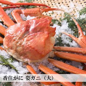 香住がに ベニズワイガニ 丸ガニ(姿)ボイル 700g 中松商店|arumama
